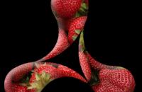 cream-logo-strawberries