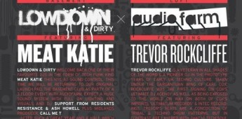 Audio Farm and Lowdown and Dirty team up for a NYE spectacular.