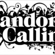 standon calling logo 2012