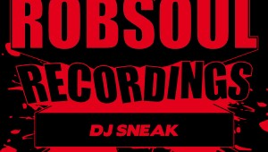 DJ Sneak 'The Best of Robsoul Vol. 2'