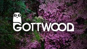 Gottwood Festival Final Lineup Additions!