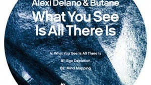 Alexi Delano and Butane – What You See Is All There Is