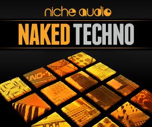NICHE NAKED TECHNO 300 x 250