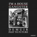 IAHG017 - DEMUIR - PAST TO FUTURE  sleeve