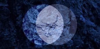 Dominik Vaillant 'Skyscraper EP' Lauter Unfug