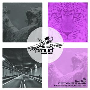 corey-biggs-cheetah-appeal-remixes
