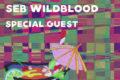 Treehouse Summer Boogie w/ Seb Wildblood